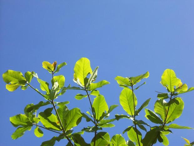 Gili's blue sky